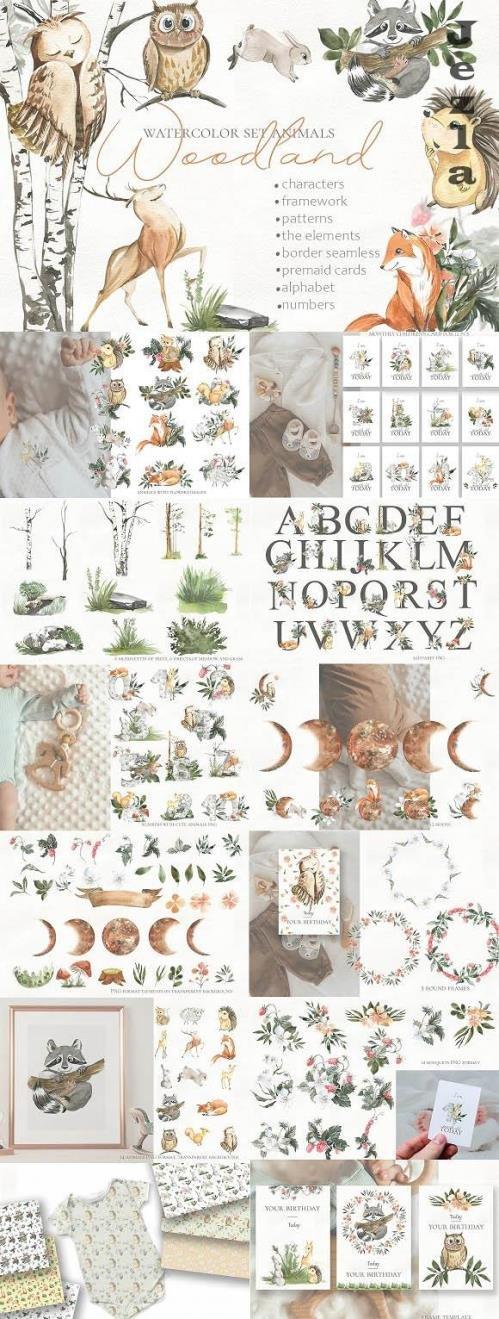 Woodland animal watercolor set - 1450163