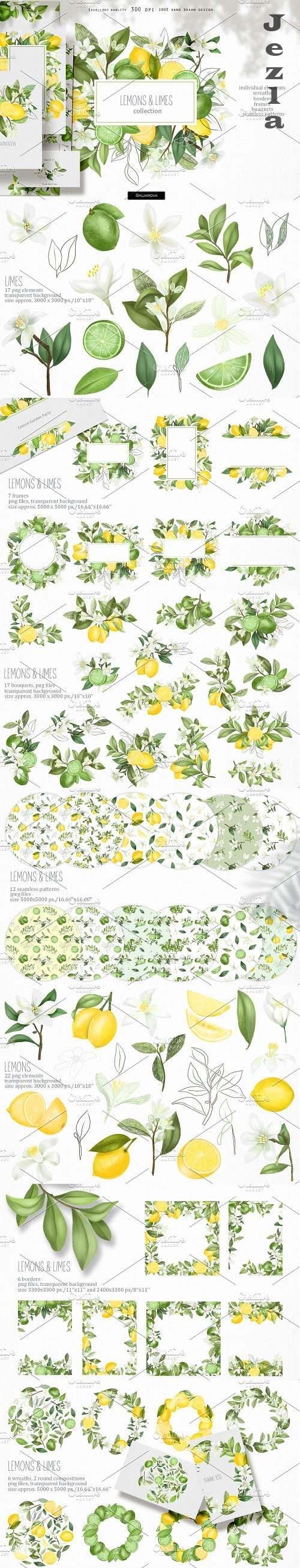 Lemons & limes collection - 4609745
