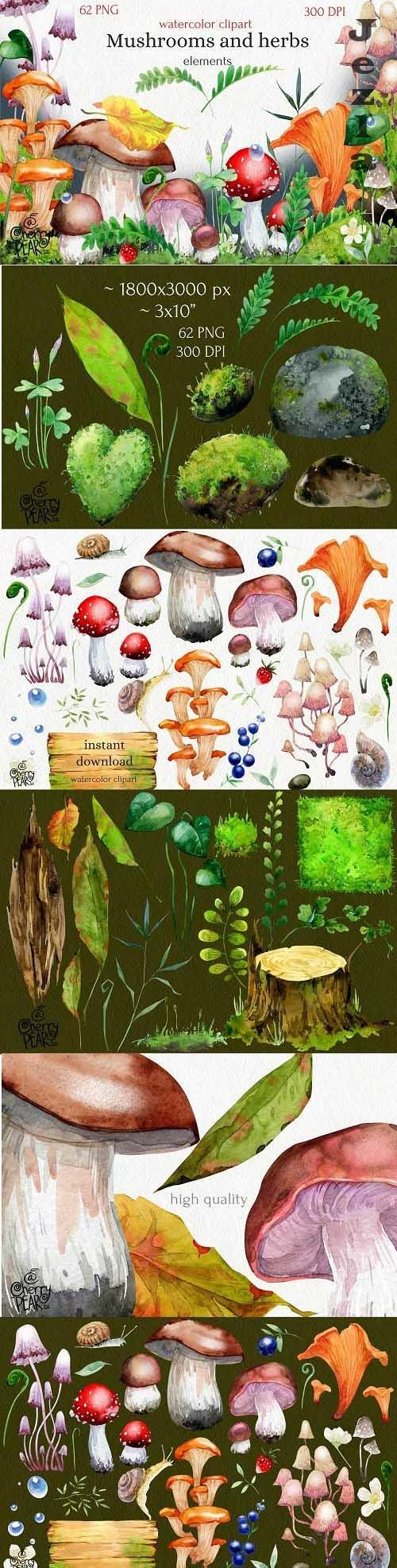 Watercolor cliparts of mushrooms and herbs, individual PNG - 1473824