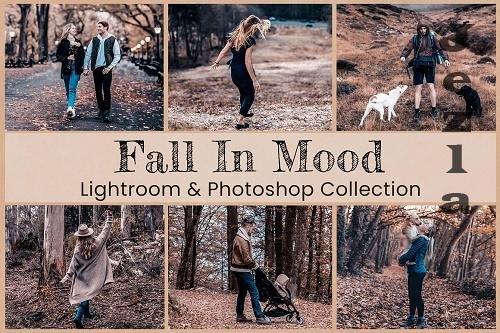 Fall In Mood LRM PS Presets - 6360419