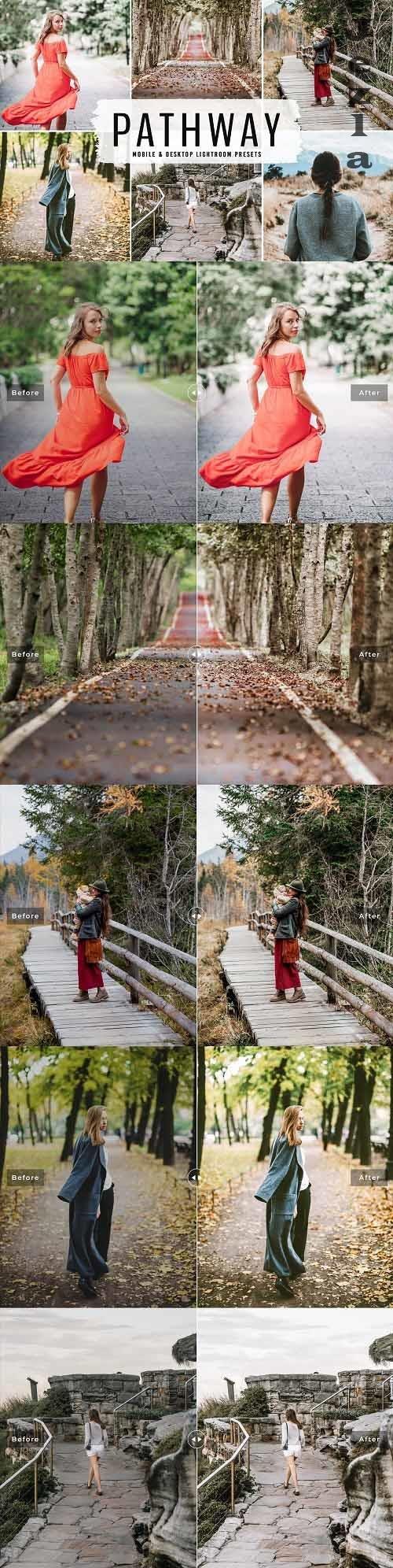 Pathway Pro LRM Presets - 6517613