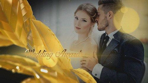 Проект ProShow Producer - Wedding Awards