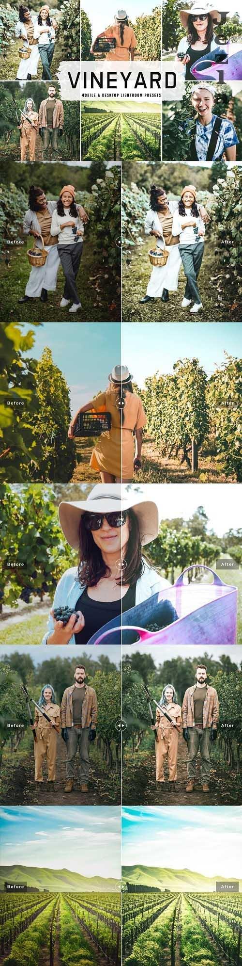Vineyard Pro LRM Presets - 6525809