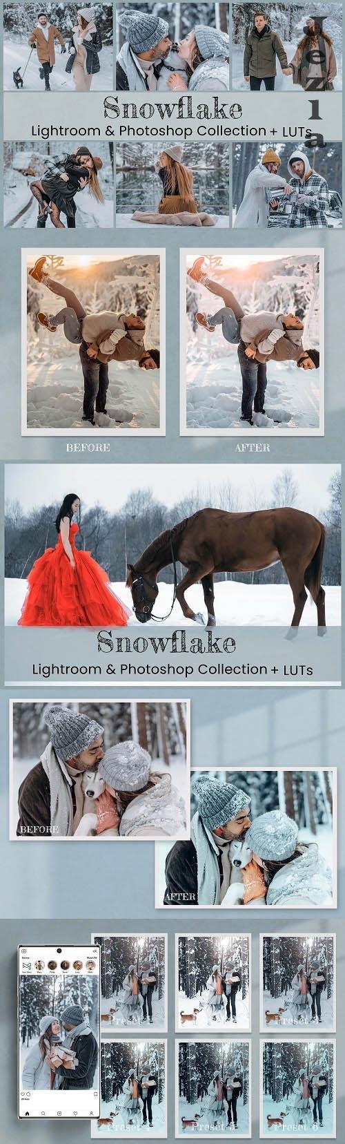 Snowflake Lightroom Photoshop LUTs - 6573896