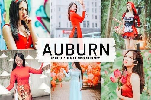 Auburn Pro LRM Presets - 6598675